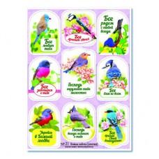 """Наклейки с просечкой изображения: """"Божья забота"""" (птички) №21"""