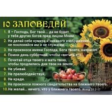 "Календарь 2021 карманный ""10 Заповедей"""